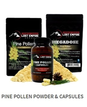 THIS is where to buy Pine Pollen Powder!